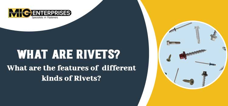 What-are-rivets-What-are-the-features-of-different-kinds-of-rivets-mig-jpg